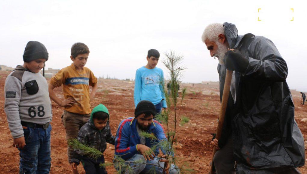 مشاركة شعبية لزراعة 2000 غرسة حراجية في قرية كفر حلب.