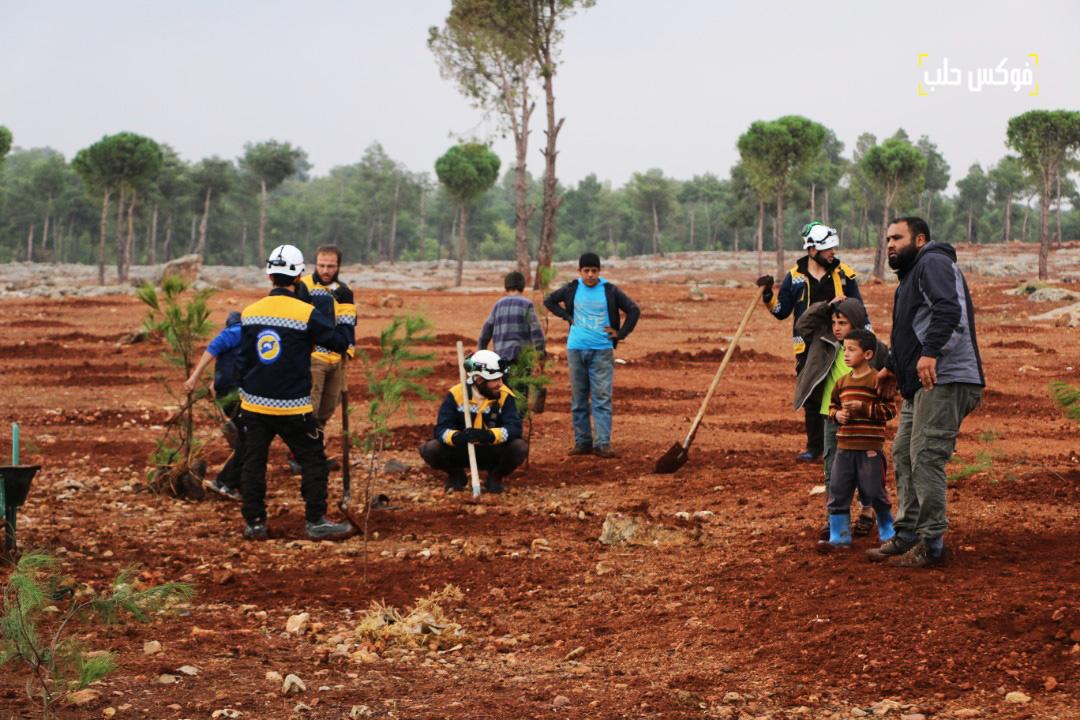 مشاركة عناصر من الدفاع المدني لزراعة 2000 غرسة حراجية في قرية كفر حلب.