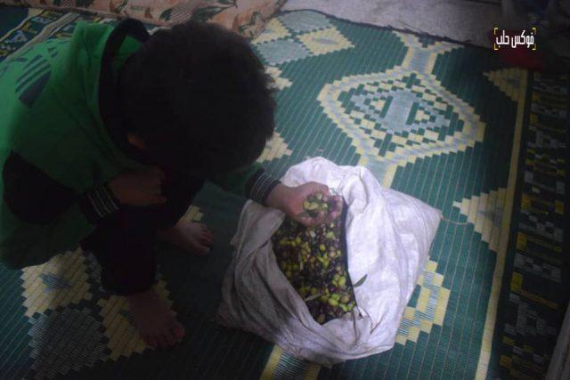 طفل يجمع غلته من
