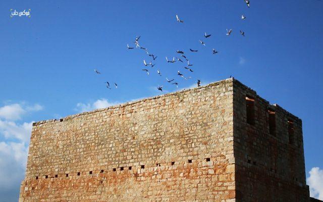 برج حمام في قرية ترملا بريف إدلب