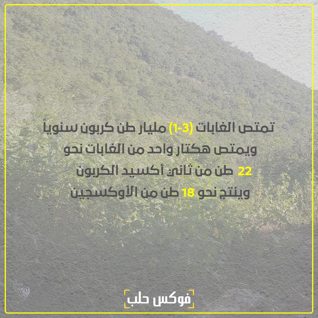 تصميم: عبد الله الخطيب