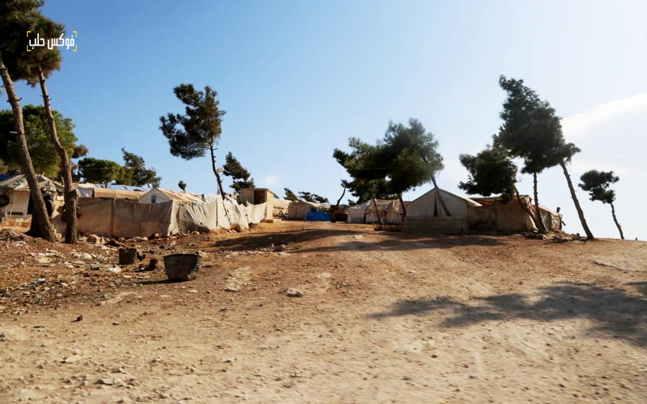 مخيمات للنازحين في حرش حارم