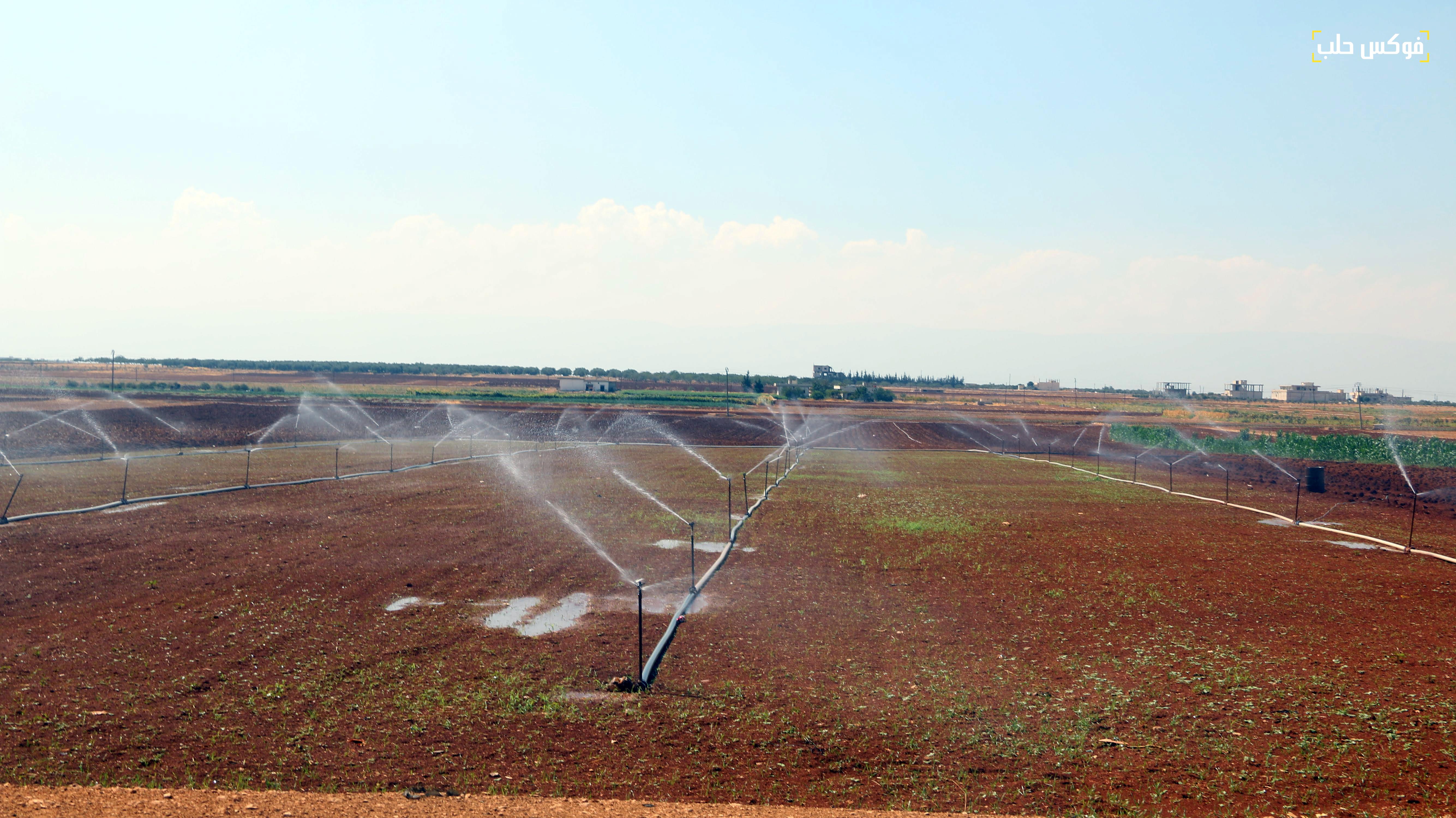ري الأراضي الزراعية من خلال الآبار في ريف إدلب