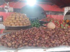 الكستناء في أسواق إدلب -فوكس حلب