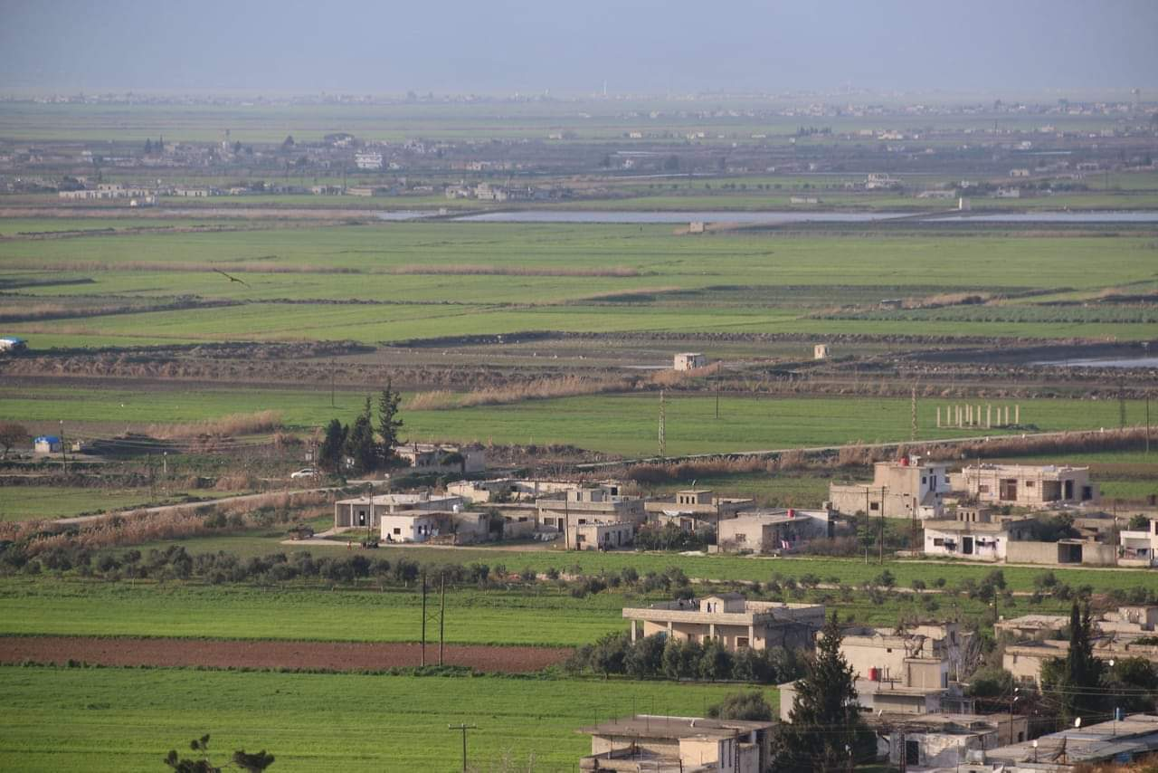 سهل الغاب -فوكس حلب