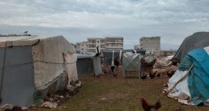 الصورة لتكتل خيام عشوائية في عفرين -فوكس حلب