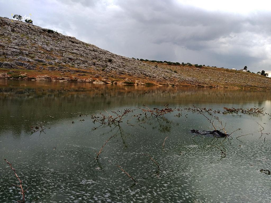 مياه الصرف الصحي تصل إلى سد كفروحين غرب إدلب