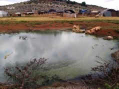 خيام مبنية في نقطة التقاء المياه الأسنة بمياه سد كفروحين غرب إدلب