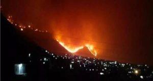 حرائق الغابات في سوريا -إنترنيت