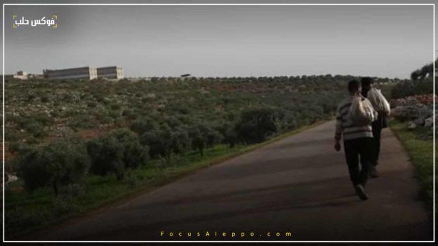 قطاف النباتات العشبية في إدلب