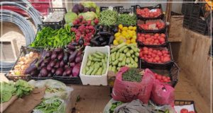 الصورة من أمام محل لبيع الخضروات في ريف عفرين ـ فوكس حلب