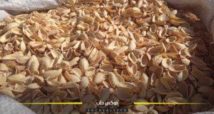 قشر الفستق واللوزيات وقود المدافئ في الشمال السوري